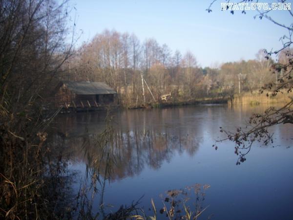 Осенние фото мельницы, озера у деревни Бричицы Дятловского района